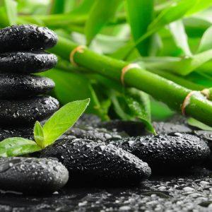 Meditatia Vidului ZPM – 12 Octombrie 2019 – Ora 10.00